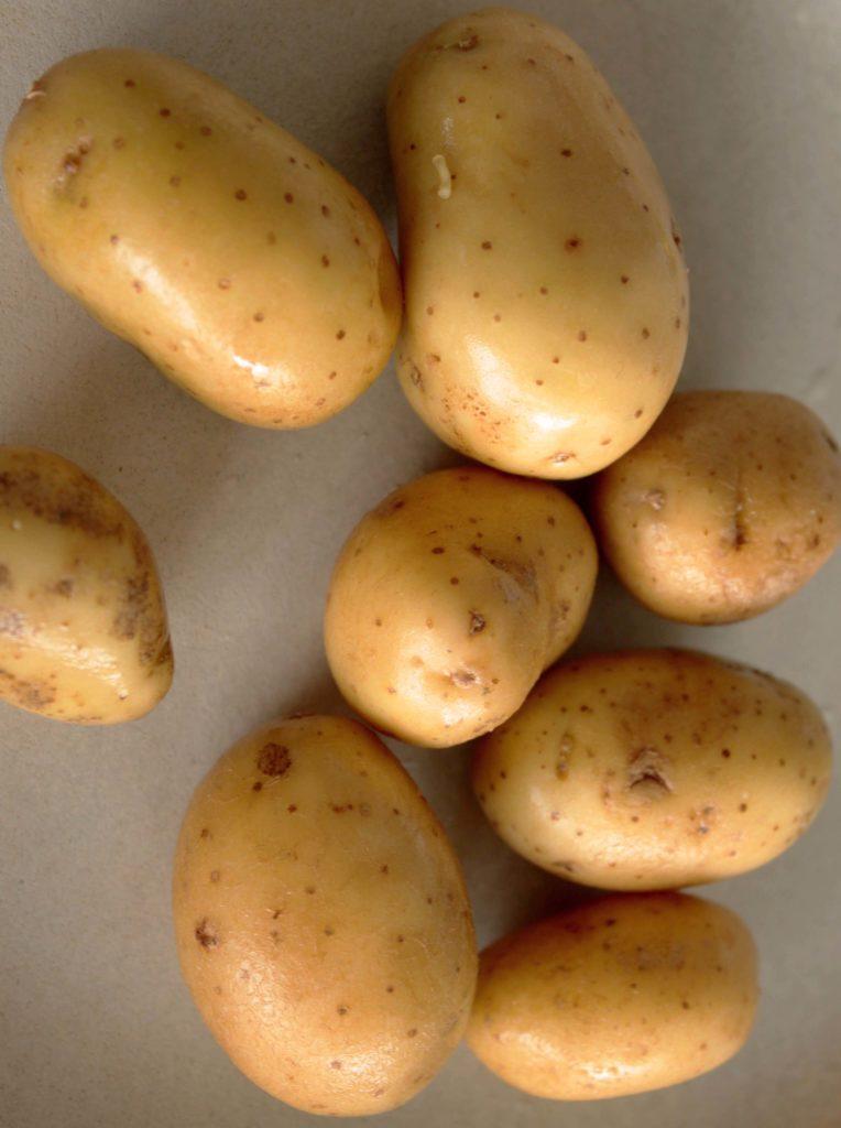 Des pommes de terre pour les frites